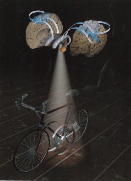 bike and brain