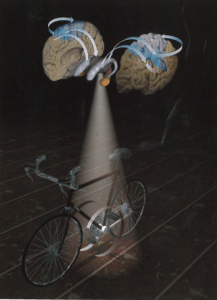 Bicycles and Brains