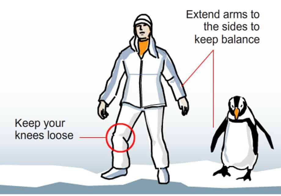 Keep Calm & Waddle On: Act like a penguin on the ice
