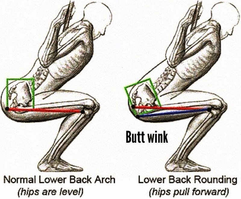 Getting the Max Out of Your Gluteus Maximus