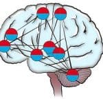 Train Your Brain Away From Pain