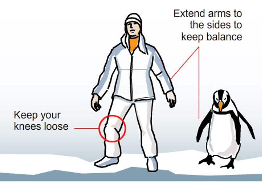 Icy Conditions – Keep Calm & Waddle On